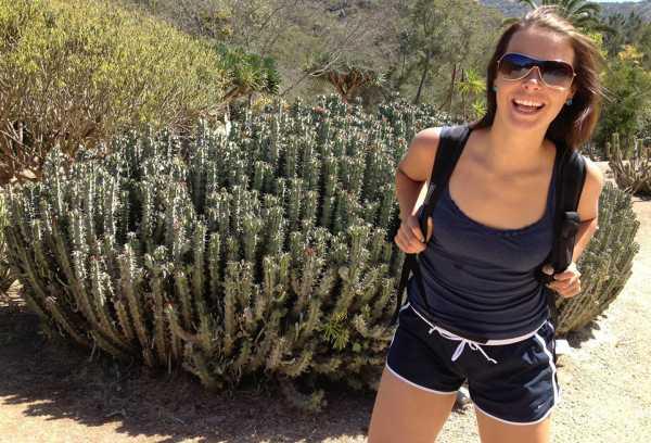Cactus_online