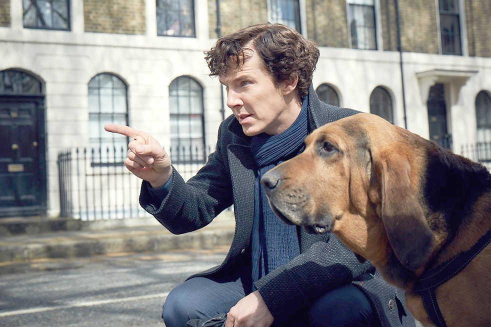 Photo courtesy of BBC
